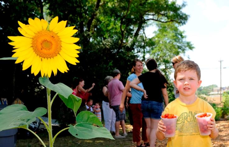 Child Sunflower