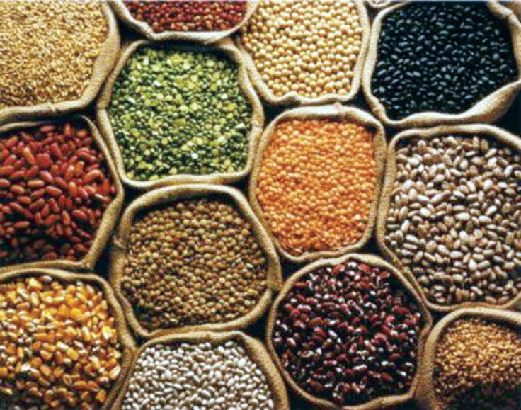 Resultado de imagen de FOOD SECURITY